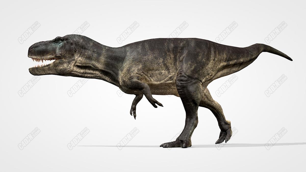 13个逼真远古C4D恐龙模型包
