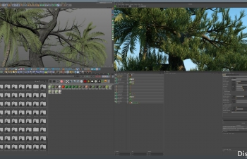 C4D贴图 Forester植物插件Octane渲染器版贴图预设文件 Octane Textures for Forester 3DQuakers