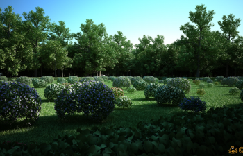 C4D植物生成插件汉化版 Laubwerk SurfaceSPREAD V1.0.34 R12-R16 Win