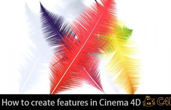 C4D羽毛制作教程How to create features in Cinema 4D