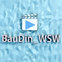 BauDin_WSW